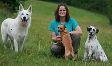 Hundesprache übersetzen